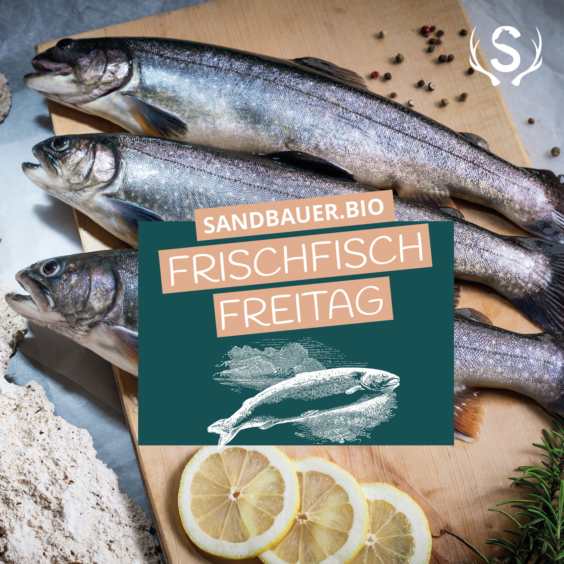 Sandbauer.Bio Frischfisch Freitag